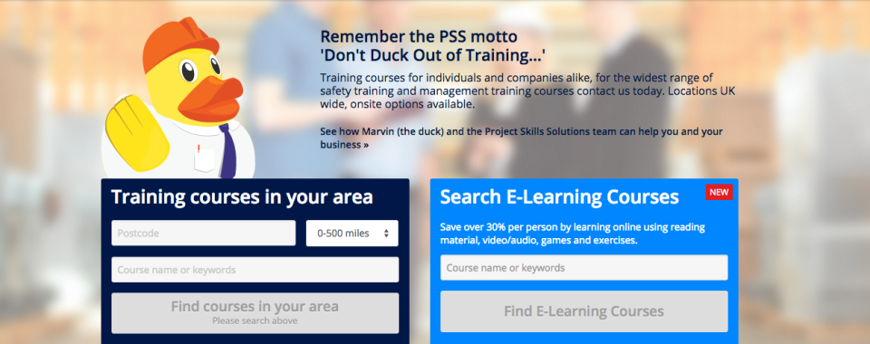 Main Project Skills Solutions website image